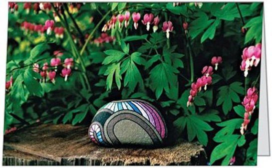 Bleeding Hearts and Painted Rock Photo 5 x 7 Blank Greeting Cards