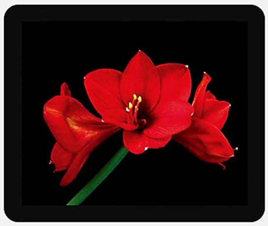 Red Amaryllis Flower Mouse Pad for Home or Office, Dynamic and Impressive Gift for Her or Him