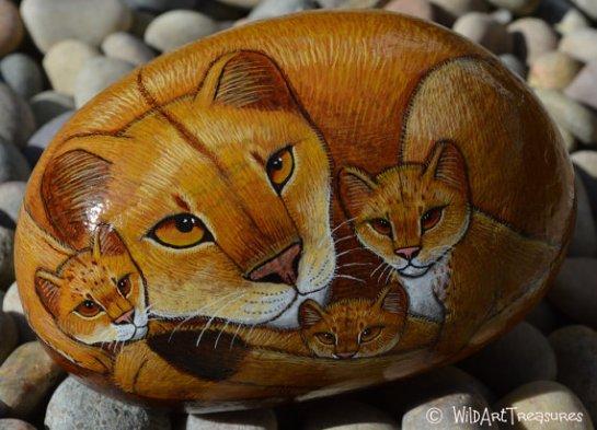 z cat family