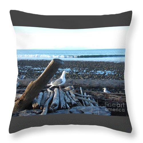 seagulls-and-driftwood-seascape-delores-malcomson Throw Pillow