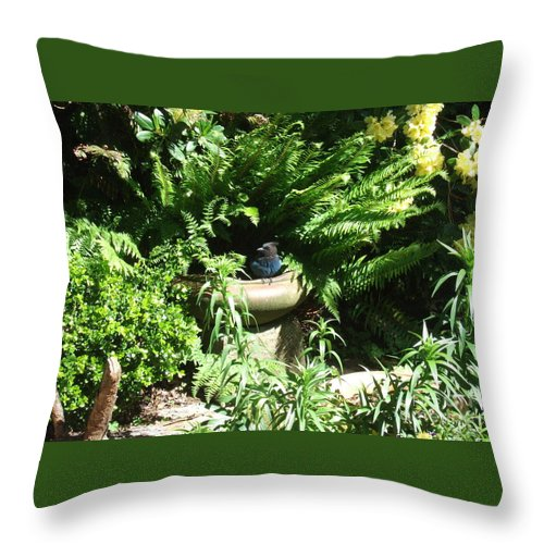 Throw Pillow the-new-baby-bluejay-out-exploring-the-garden-delores-malcomson (1)